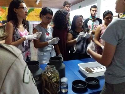 Zoobotanica na  Escola Estadual Professor Honório Rodrigues Amorim